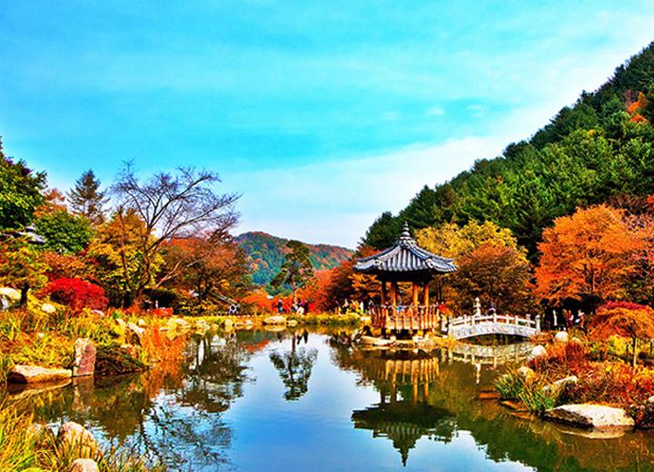 Hàn Quốc có gì? Những điểm đến không thể bỏ qua khi đến Hàn Quốc