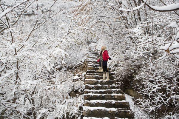 Hàn Quốc lạnh vào tháng mấy? Tìm hiểu thời tiết Hàn Quốc