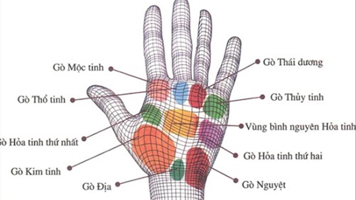 Giải mã nốt ruồi lòng bàn tay có ý nghĩa gì?